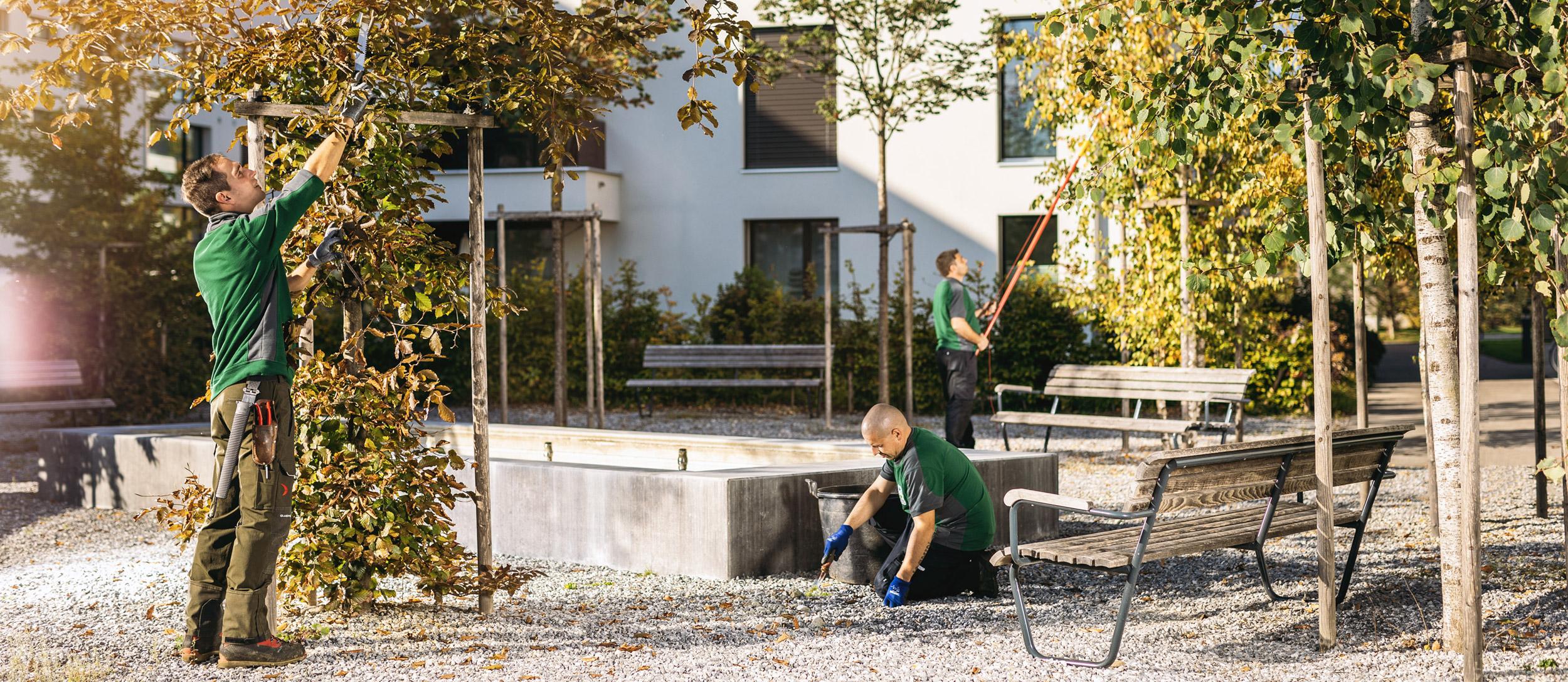 R. Zürcher Hauswart-Service AG – Garten- und Umbgebungspflege